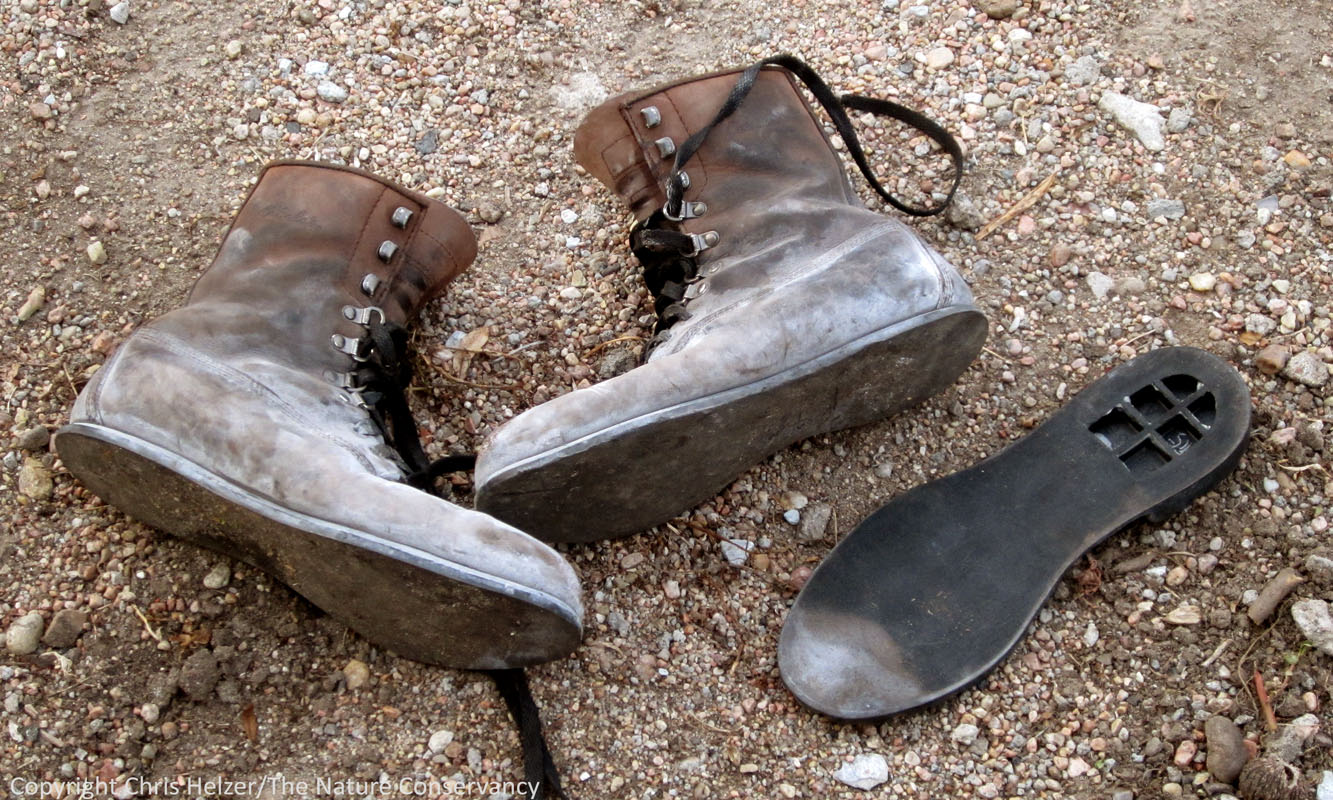 the wrong boots the prairie ecologist
