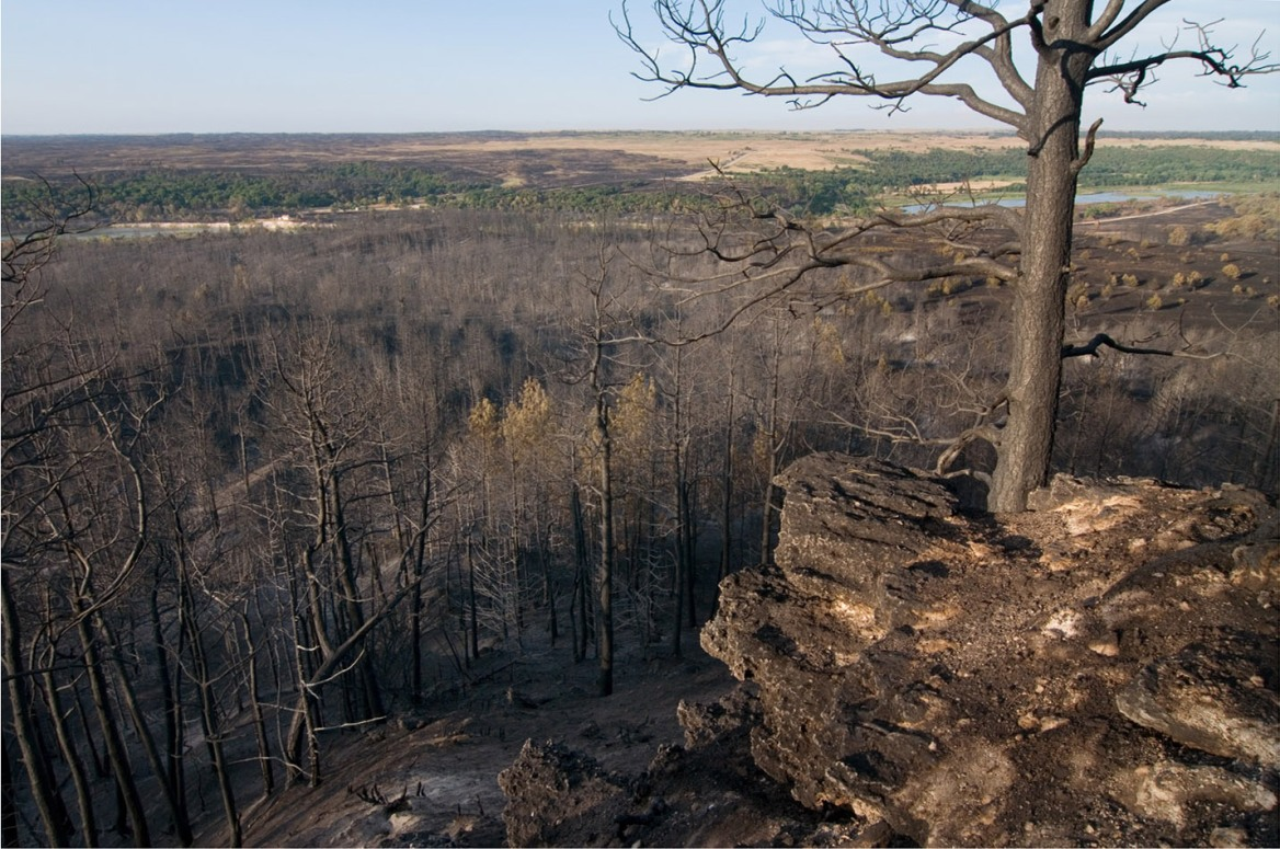 Second Update on Wildfire Impacts at the Niobrara Valley ...