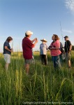 Gerry Steinauer teaching plant identification to a Master Naturalist class.