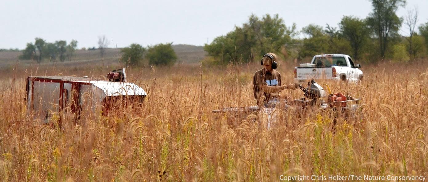The Right Metaphor For Prairie Restoration The Prairie
