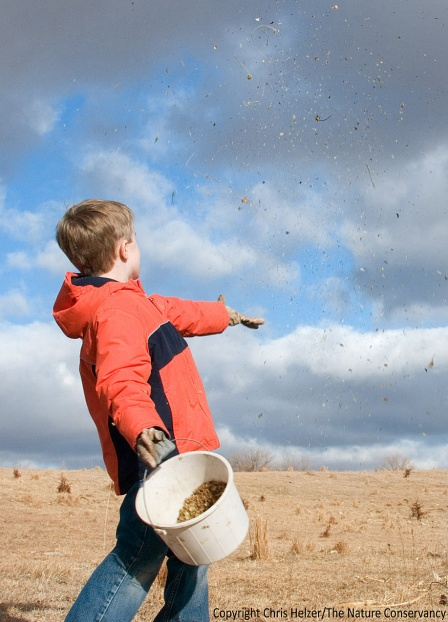 My son Daniel, throwing seeds at our family prairie.
