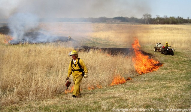 When burning in drought conditions, it's particularly important to be conservative.  Extra wide firebreaks, larger crews, and strong contingency plans are all good ideas to consider.