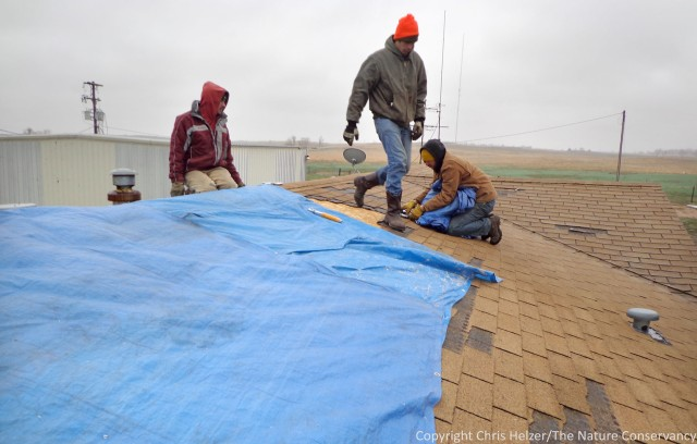Stapling tarps to the roof of the crew quarters house at our shop facility.