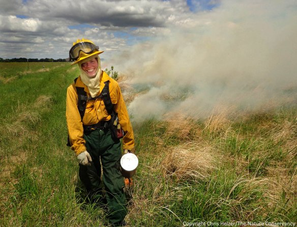 Michelle Biodrowski ignites a prescribed fire last week (June 6) at a wet-mesic prairie.  The Nature Conservancy's Platte River Prairies.
