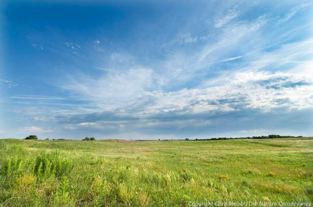 The wide open prairie along the Platte River is a big change from where both Eliza and Anne grew up.  They seem to be adapting just fine...