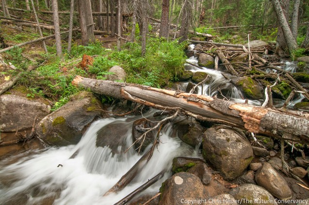 We rented a cabin south of Idaho Springs, Colorado for our vacation week.  The highlight of the cabin was the beautiful stream that flowed nearby.