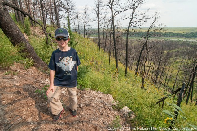 Here's Daniel, standing among the weedy regrowth under the burned out pines north of the river.
