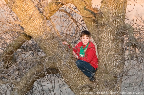 My kids like to climb trees and make forts in the scattered pockets of trees around the property.  They also dig in the mud, chase grasshoppers, and do all kinds of other kid things.