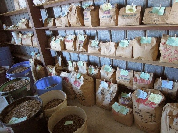 Shelves of processed seeds wait to be mixed and planted.