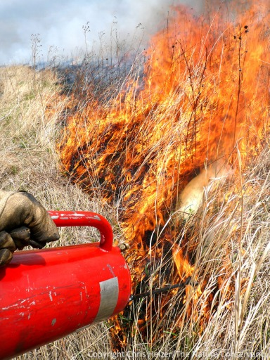 Prescribed fire is an important prairie management tool and shouldn't be blamed for contributing to climate change.