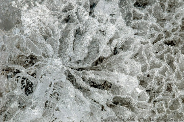 Patterns in ice.  Helzer prairie pond, near Stockham, Nebraska.