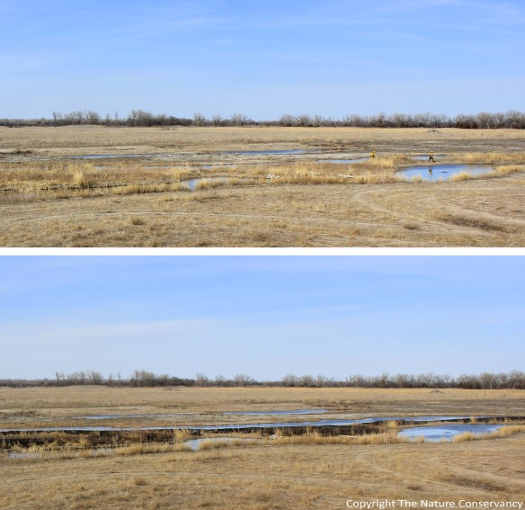(Top) March 26, 2013.  4:45 pm.   (Bottom) March 26, 2013.  5:15 pm. These two photos, taken a half hour apart, show two of us preparing to burn off the small island in the restored wetland and then the completed burn.  (It doesn't take very long when the island is surrounded by water and sand).