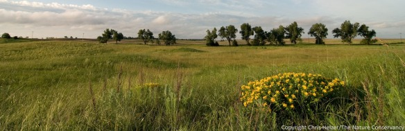 The Nature Conservancy's Platte River Prairies, Nebraska.