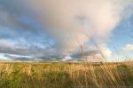 Sandhill prairie.  The Nature Conservancy's Niobrara Valley Preserve.