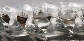 Ice patterns on Platte River