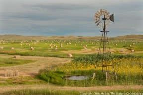 Windmill, hay and Sandhills prairie