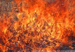 Prairie fire.  The Nature Conservancy's Platte River Prairies, Nebraska.
