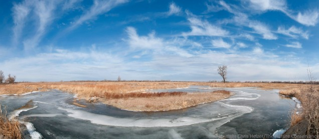 A panoramic photo made up of nine different images stitched together.  The Nature Conservancy's Derr Wetland Restoration, Nebraska.