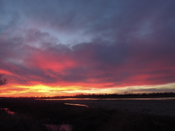 Sunset over the Platte River. Photo by Eliza.