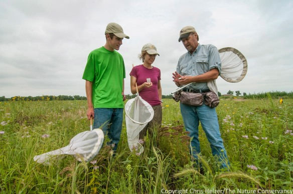 Anne Stine (center) learning about bees from Mike Arduser (right), along with Sam Sommers (left).