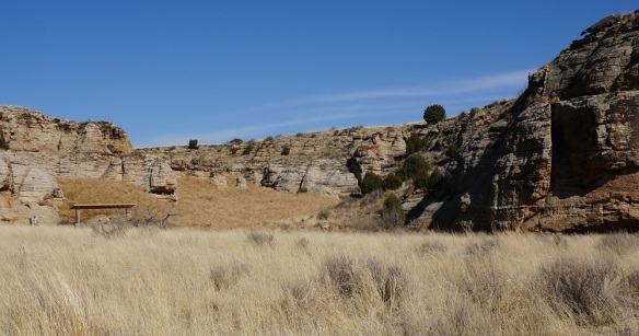 Tumbleweeds- I wasn't kidding about the 40 ft canyon full up with tumbleweeds. See the person leaving the picnic area? She said the weeds rolled like a wave with every gust.