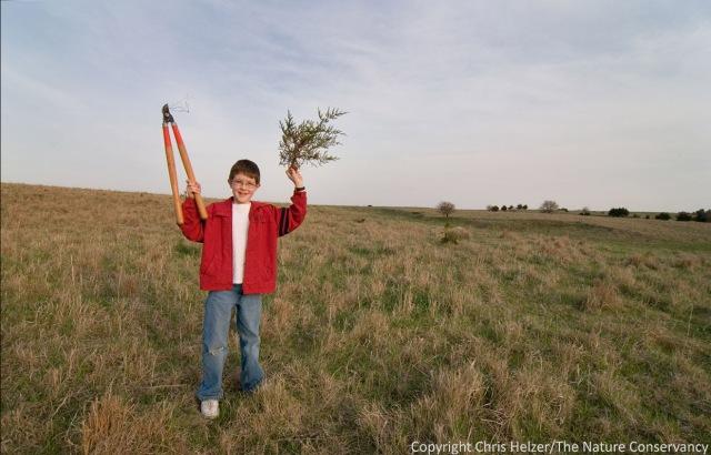 My son John, when he was 9, helping us clear cedar trees.