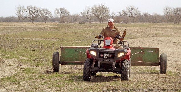 When most of us do prairie restoration (reconstruction), we focus mainly on harvesting and planting seeds.  We think a little about soils in terms of getting good seed-soil contact and the seed bank of weed species.  Should we be thinking much more about the soil microbial community and potentially adding to it?