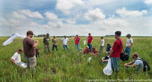 Join fellow prairie enthusiasts and biologists for a fun day in the Platte River Prairies on June 13, 2014.