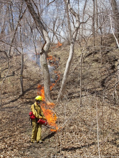 Anne Stine lights down a slope during the fire.