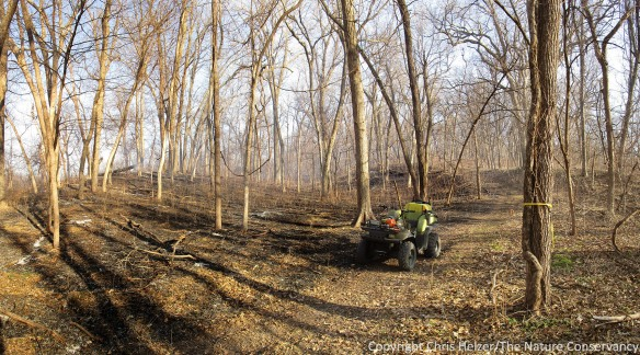 We were able to use ATVs to access some portions of the firebreaks, but others were too steep and/or narrow, and were accessible only on foot.