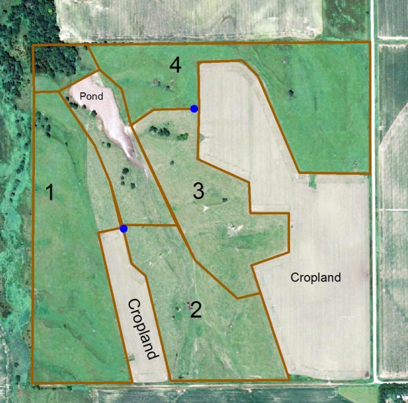 A map of our 160 acres of land, including both cropland and grassland.  The prairie is split into four main pastures.  The blue dots show water tanks that we recently installed.
