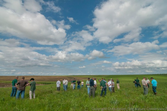 Staff of the Iowa Department of Natural Resources discuss conservation grazing at the Kellerton Wildlife Management Area in south-central Iowa.