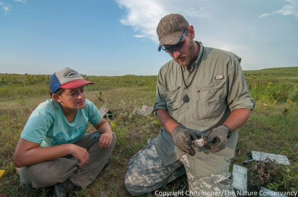 Jasmine (left) watches as Drew Ricketts explains how to identify a white-footed mouse.
