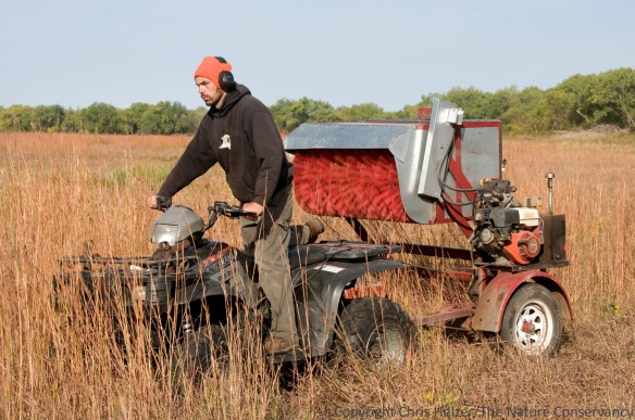 Here, Nelson is harvesting grass seed with a mechanical seed stripper borrowed from Prairie Plains Resource Institute.