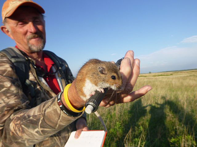 Mike Schrad, Nebraska Master Naturalist and my small mammal project mentor.