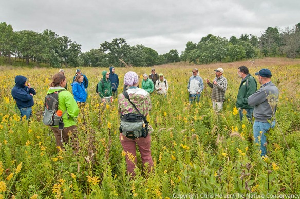 Bill Kleiman (white hat) leads a tour of a restored prairie at The Nature Conservancy's Nachusa Grassland.