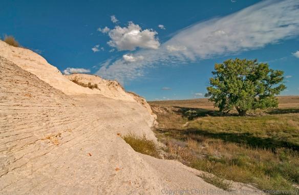 A rock outcrop above an oxbow.  The Nature Conservancy's Smoky Valley Ranch - western Kansas.