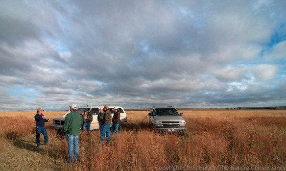 Matt Bain of the Conservancy, discusses grazing strategies with other biologists and neighbors.