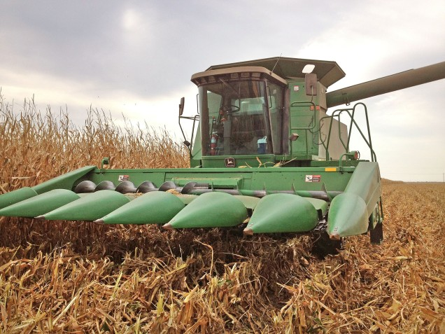 During the corn harvest, our neighbors invited us out to ride along with them in their combine and corn wagon. Years of curiosity finally fulfilled!