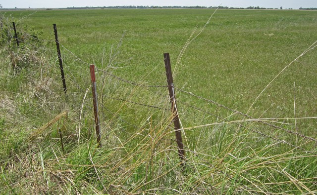 When we acquire properties, fences are often in bad shape.  This one has multiple layers and ages of barbed wire and needs to be removed and replaced.
