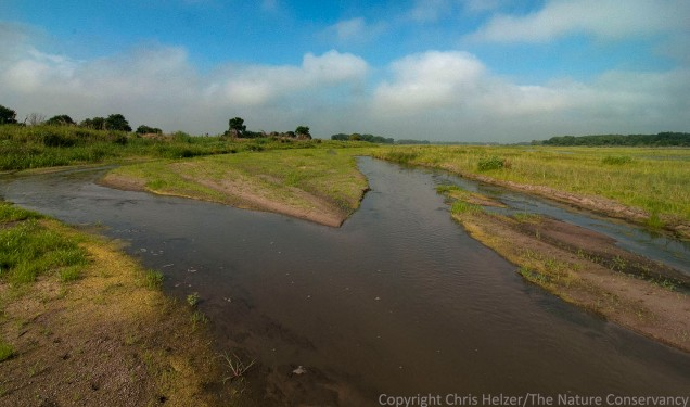 The Central Platte River near Wood River, Nebraska.