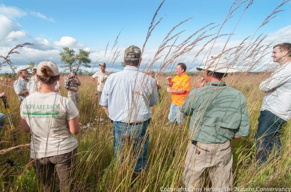 Soils tour during the 2014 Grassland Restoration Network Conference at The Nature Conservancy's Nachusa Grasslands Preserve in Illinois.