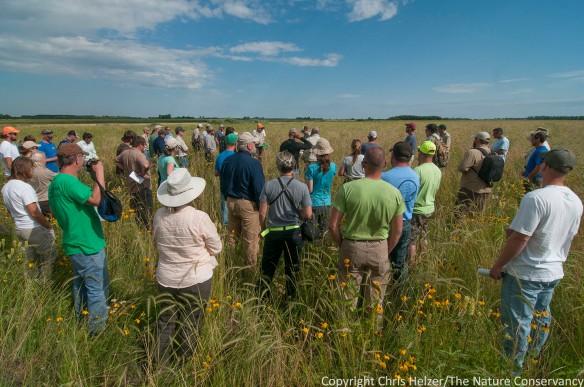 Grassland Restoration Network Meeting.  Hosted by TNC Minnesota.