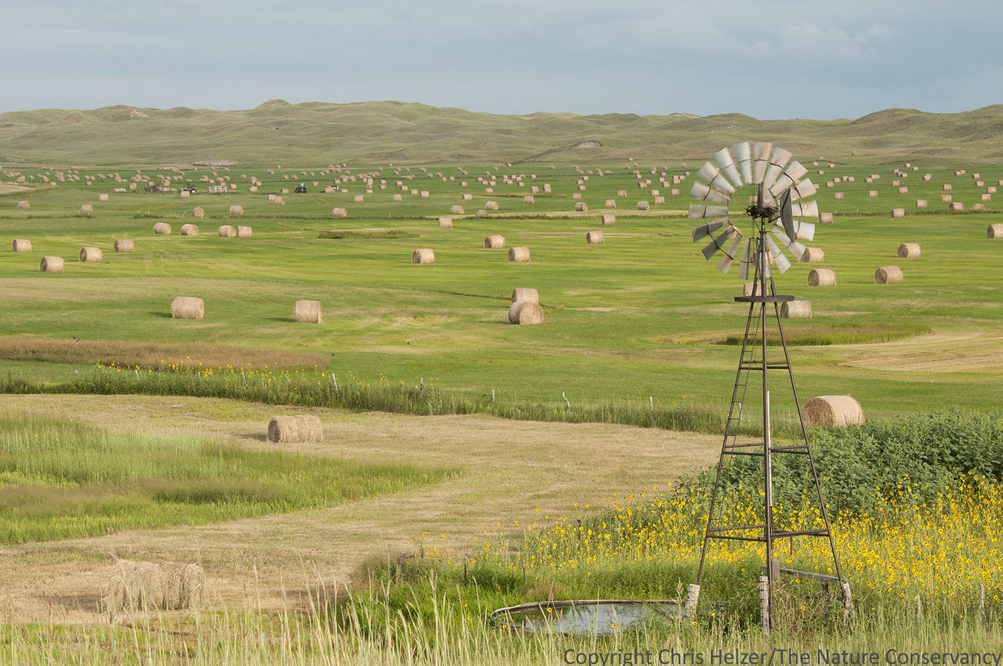 Follow Up Windmill And Bales Photo The Prairie Ecologist - Bales