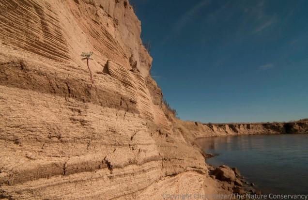 Sand bank on the Calamus River. Sandhills of Nebraska near Burwell.