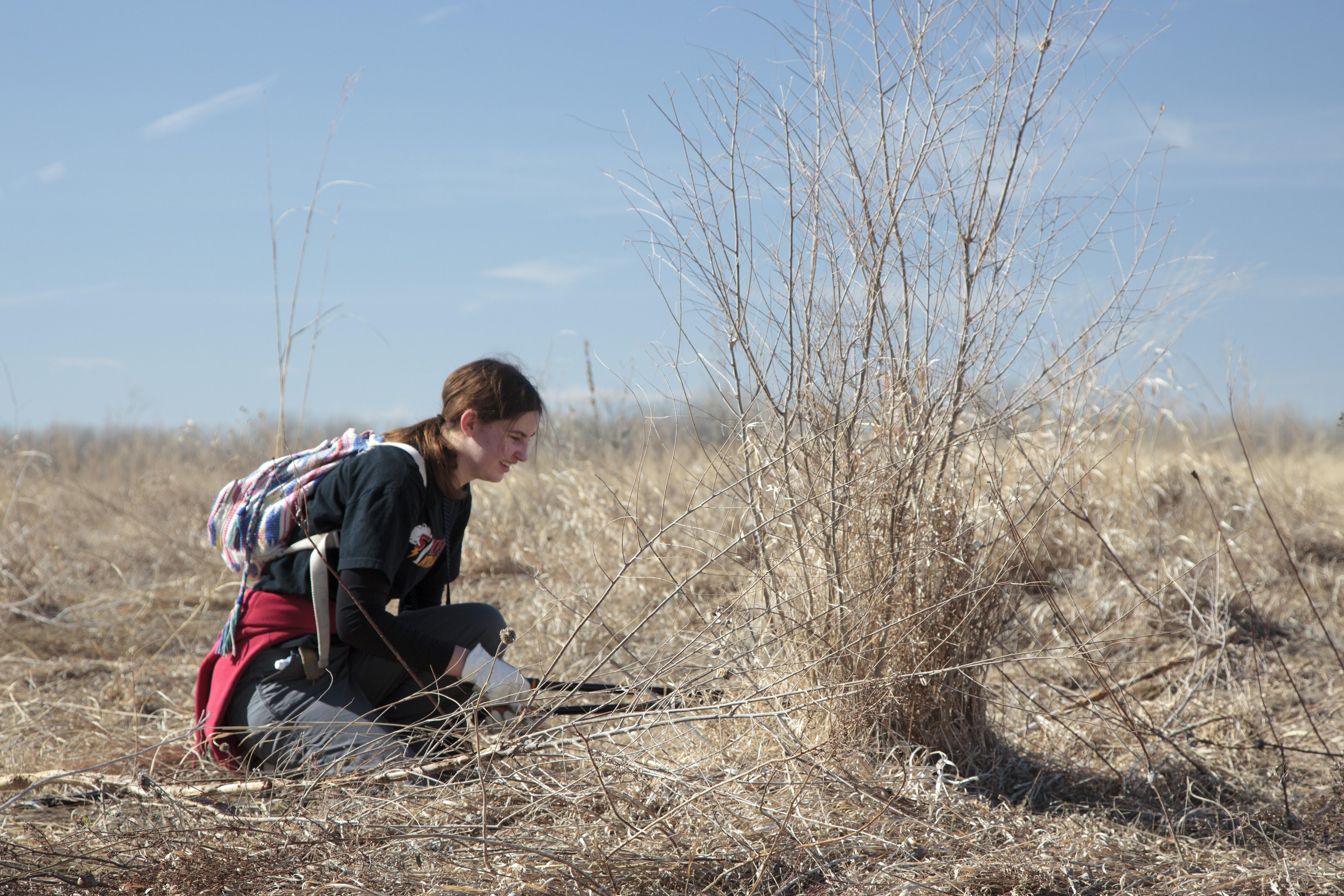 Evan Barrientos The Prairie Ecologist