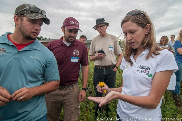 Julie Peterson, University of Nebraska Extension Research Entomologist talks about prairie invertebrates.  Platte River Prairies Field Day, August 27, 2014.