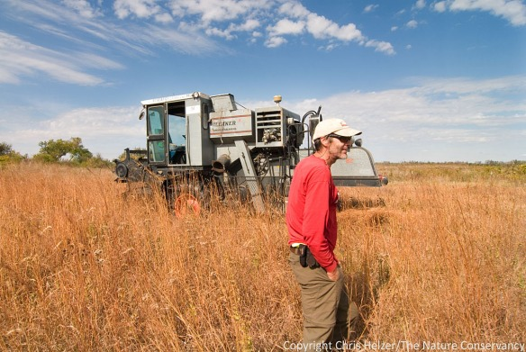 Bill Whitney (Prairie Plains Resource Institute) and his combine - harvesting grass seed at The Nature Conservancy's Derr Tract - Central Platte River, Nebraska.