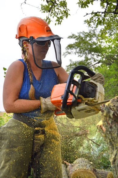Katharine Hogan (Hubbard Fellow) wields a chainsaw