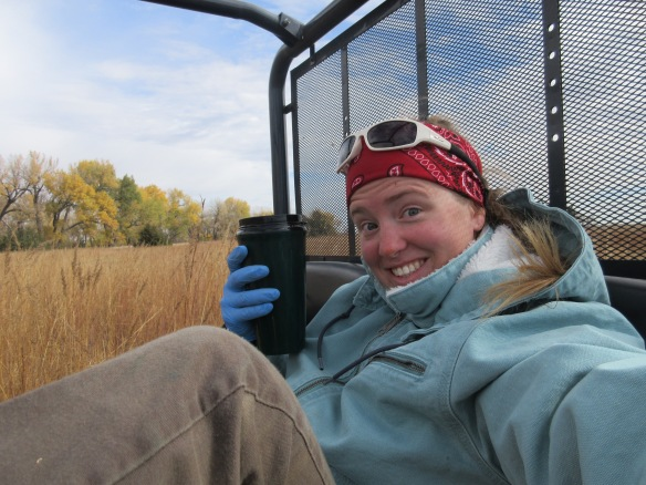 Pausing beforehand for a sip of coffee is arguably not one of the more subtly demanding aspects of spraying weeds (in this case, reed canary grass) – but on chilly days it is one of the nicest! Photo by Katharine Hogan